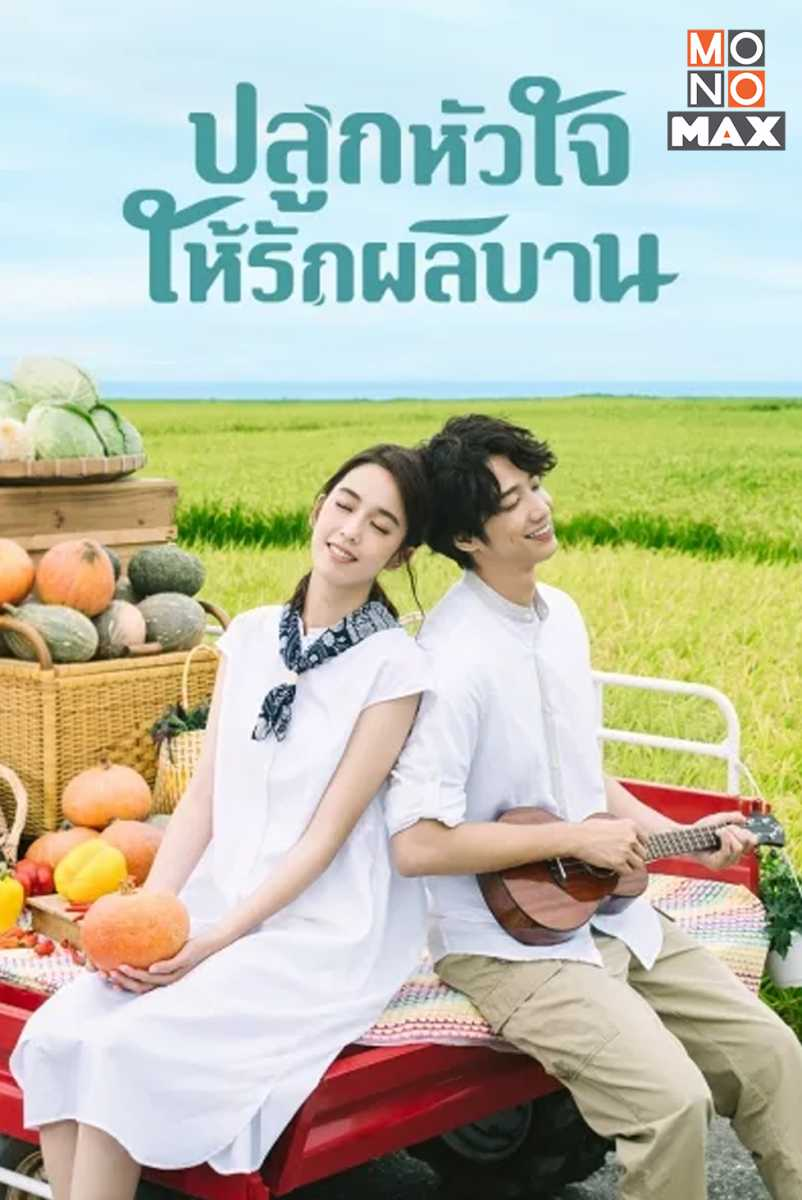 my-goddess-ปลูกหัวใจให้รักผลิบาน-2019-ตอนที่-1-24-พากย์ไทย-จบ-